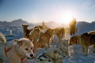 AWOLWITHALICE.Greenland. Ilulissat.GreenLandTravel